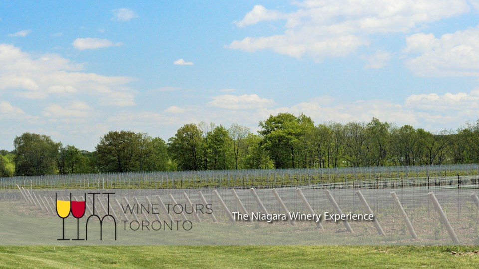 The Niagara Winery Experience for All Occasions niagarawineryexperience